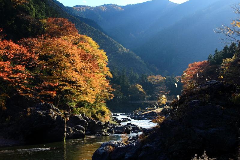 晩秋の渓谷