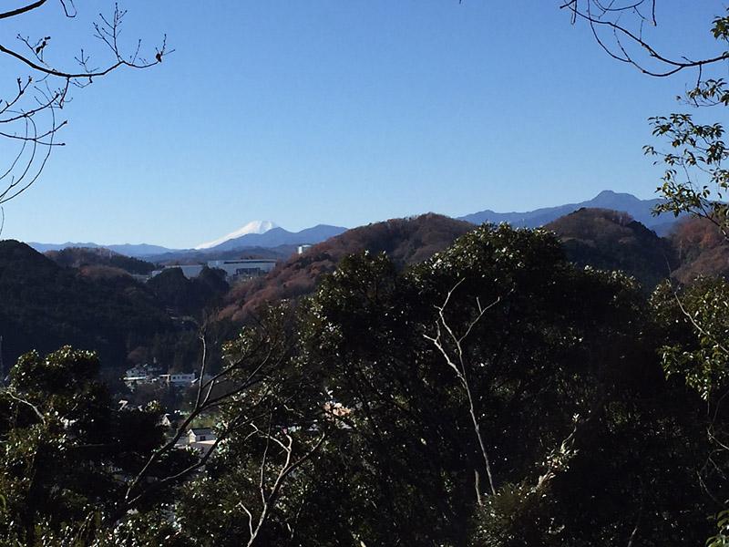 天覧山からの眺望。