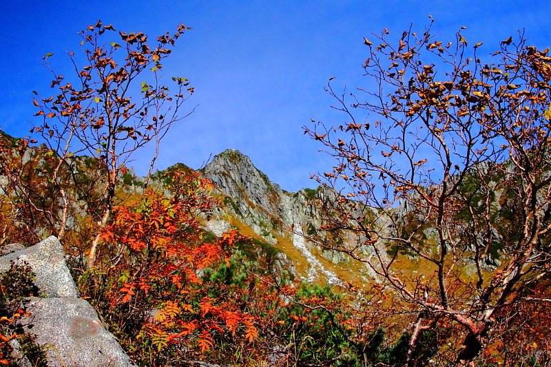 紅葉と宝剣岳