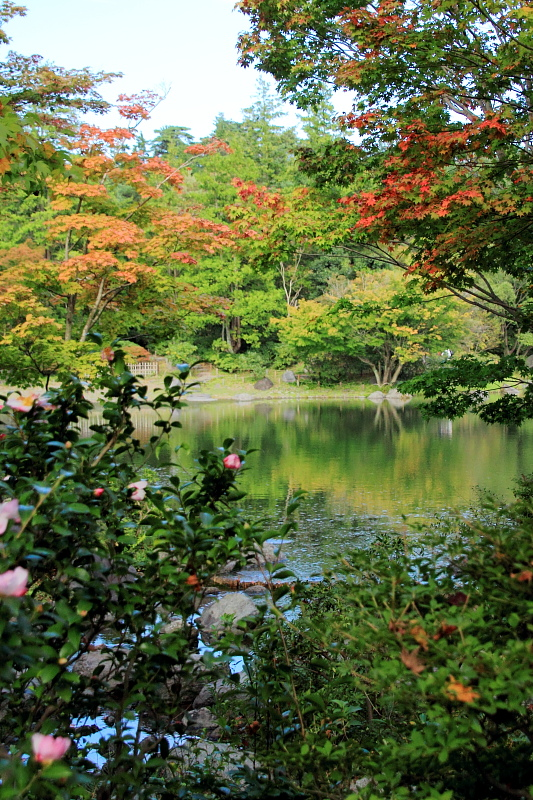 山茶花の咲く庭園