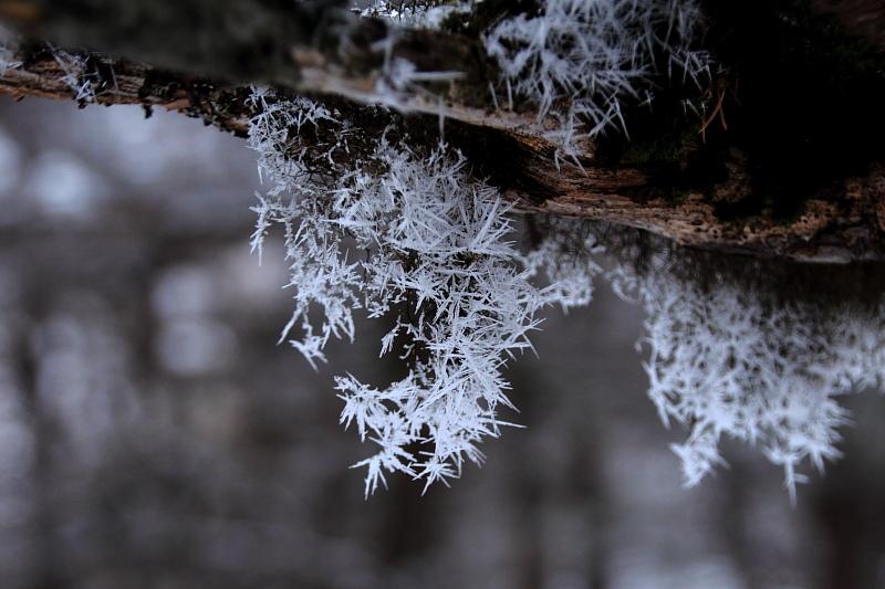 氷点下に咲く線香花火