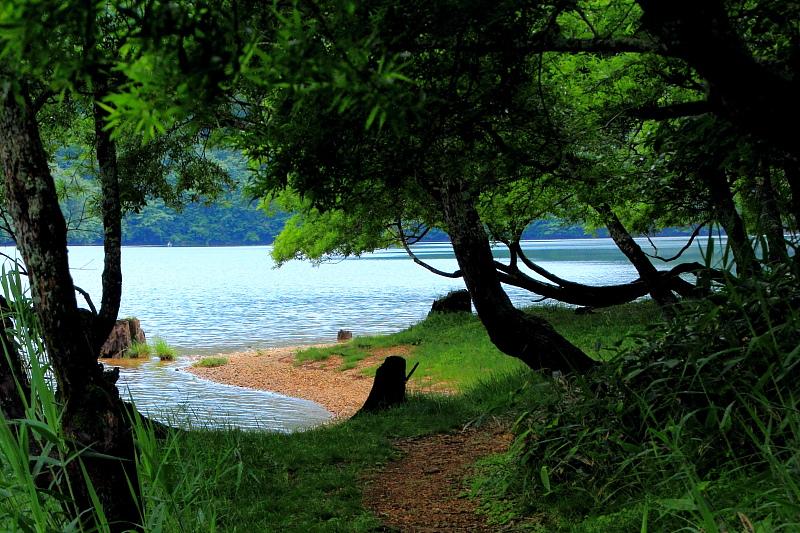 湖畔の周遊路