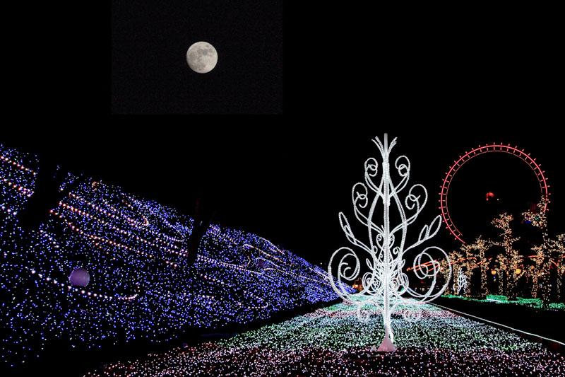 月夜のイルミネーション