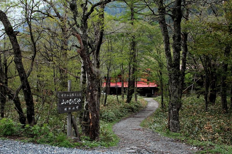 森の中の宿
