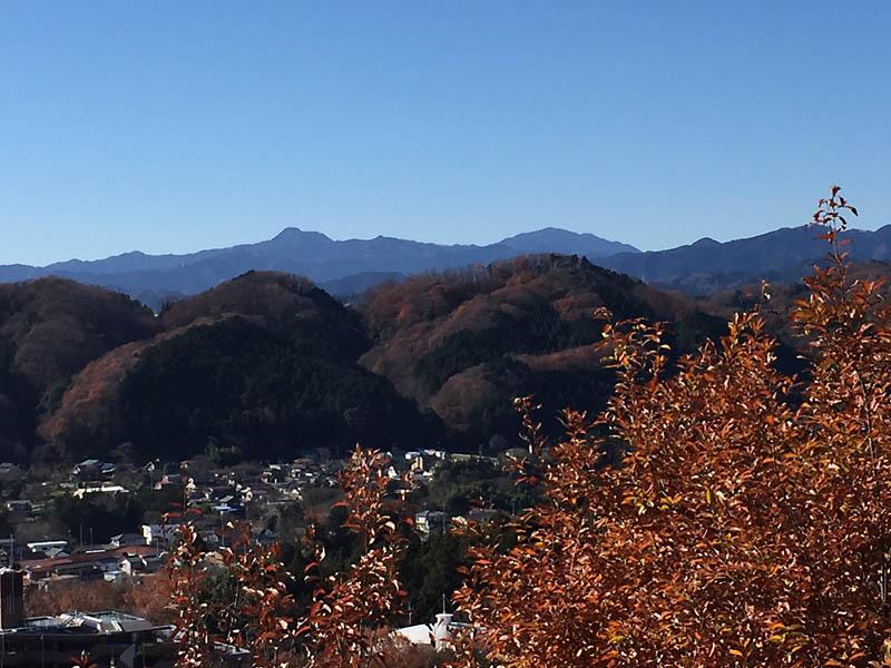 顔振山からの眺望