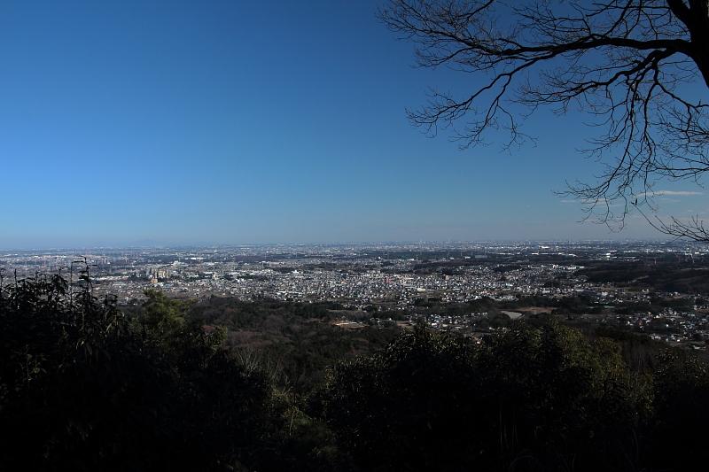 日和田山からの眺望