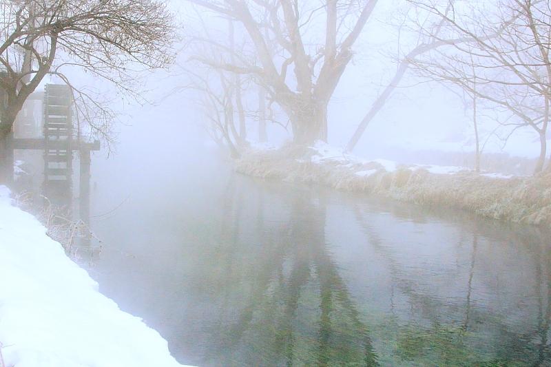 霧の中の「夢」