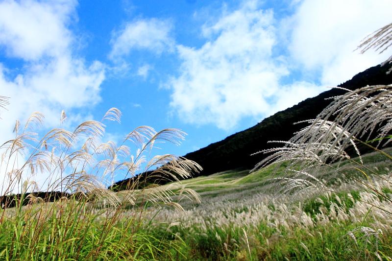 秋風吹く銀の丘